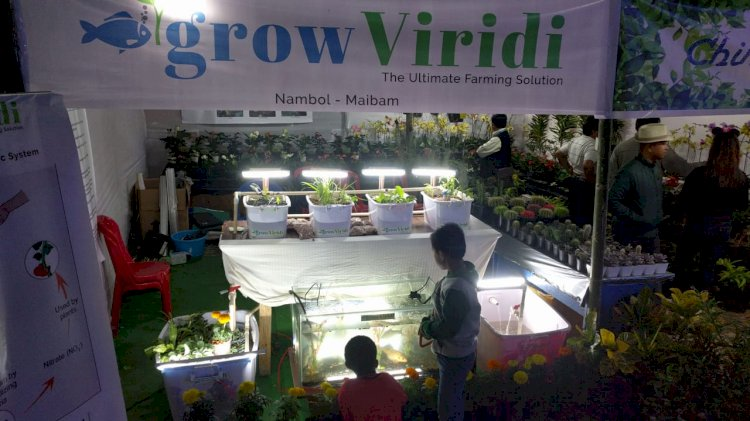 Manipuri guy who grows soil-less, chemical free greens