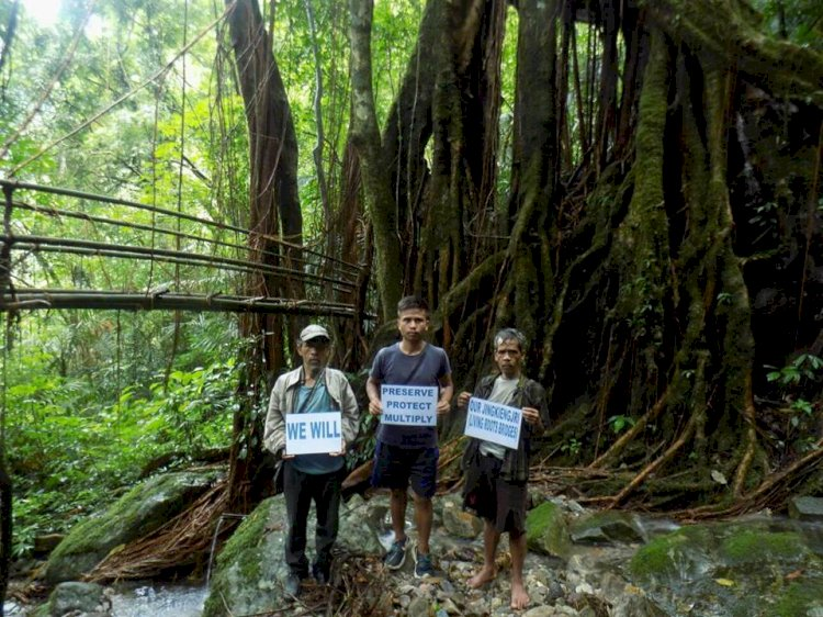 Mission Possible: Meghalaya Boy on Village Trails to Promote and Build 'Living Architectures'. thenevibes.com